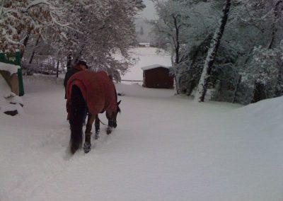 chg_sous_la_neige_5