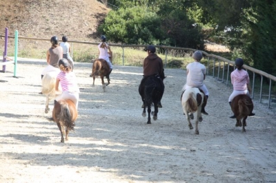 journee_du_cheval_2009_10