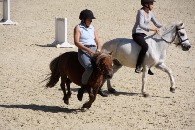 journee_du_cheval_2009_21