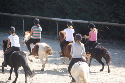 journee_du_cheval_2009_36