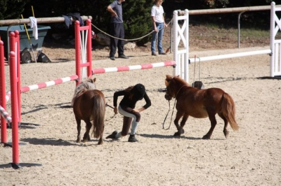 journee_du_cheval_2009_37