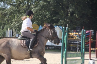 journee_du_cheval_2009_81