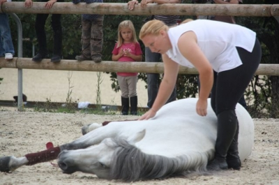 journee_du_cheval_2009_82