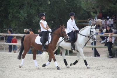 journee_du_cheval_2009_83