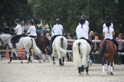 journee_du_cheval_2009_86