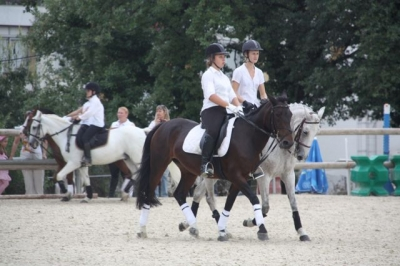 journee_du_cheval_2009_87