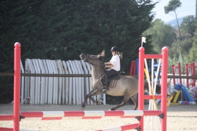 journee_du_cheval_2009_88