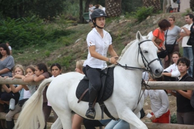journee_du_cheval_2009_91