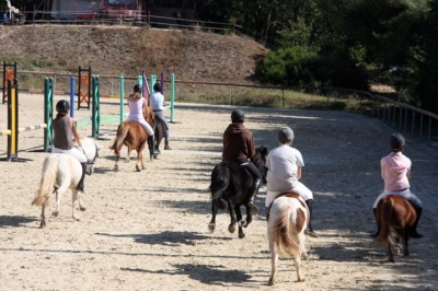 journee_du_cheval_2009_9